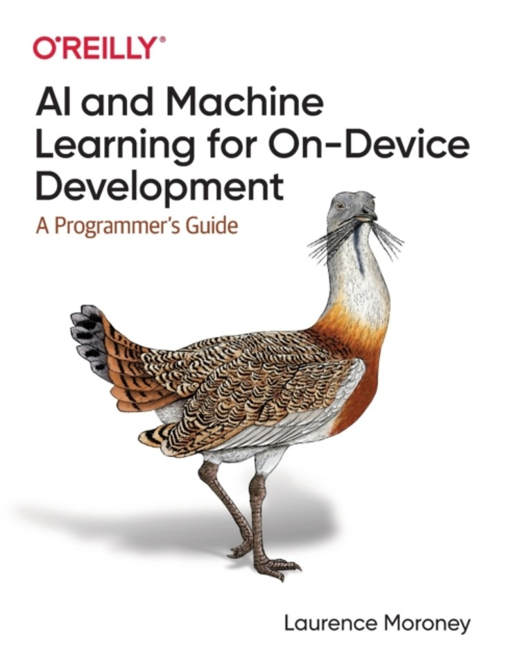 AI and Machine Learning On–Device Development