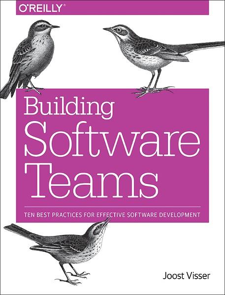 Building Software Teams Ten Best Practices For Effective Software Development