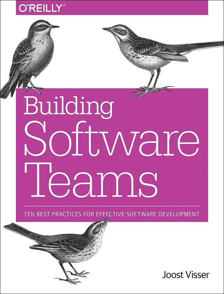 Building Software Teams