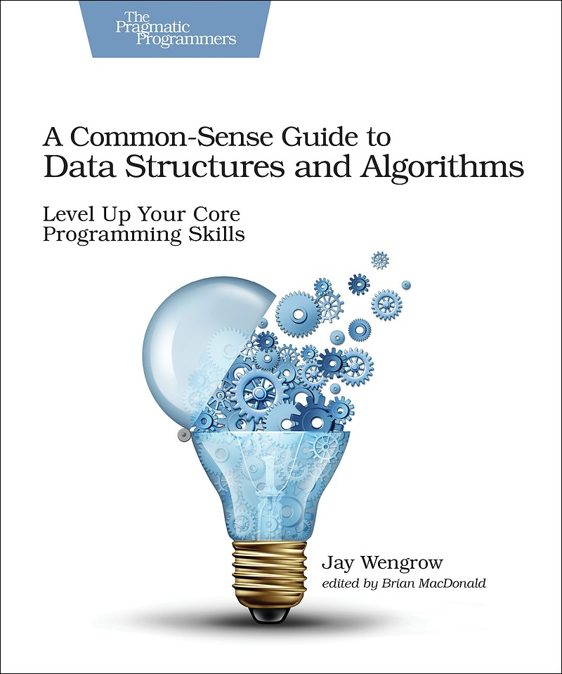 A Common–Sense Guide to Data Structures and Algorithms