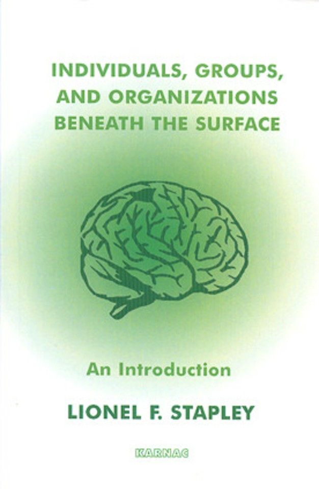Individuals, Groups and Organisations Beneath the Surface