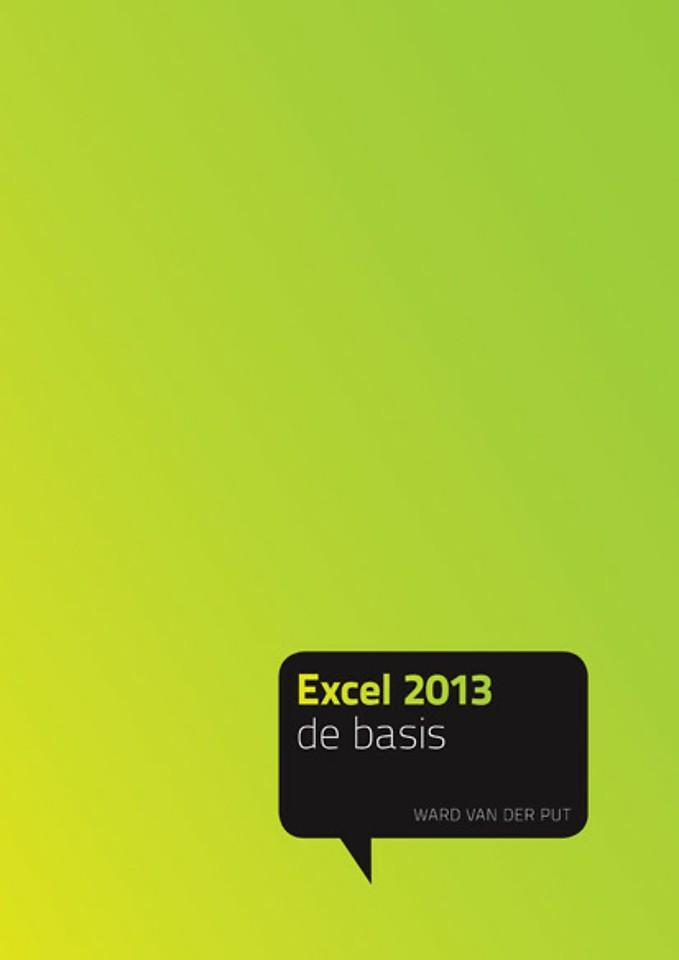 Excel 2013 - de basis