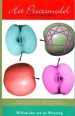 Het procesmodel in het enneagram