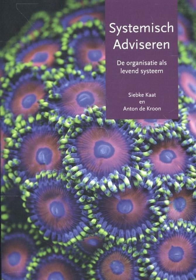 Systemisch adviseren