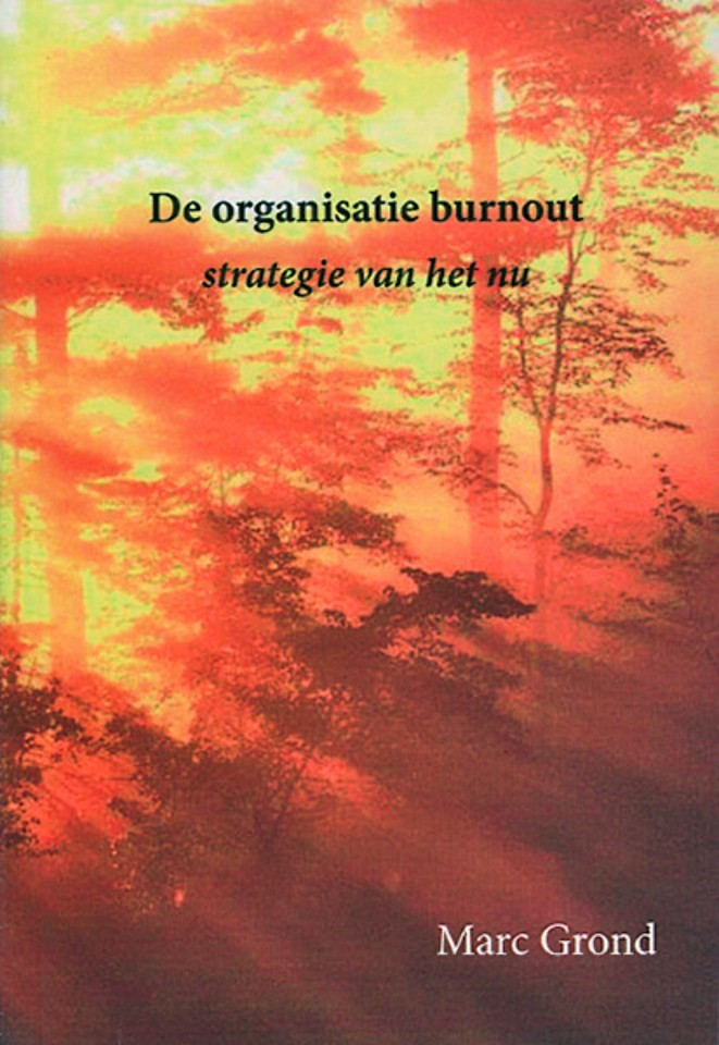 De organisatie burnout