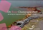 De Roze Champagne Pool: aan de slag met (organisatie)cultuur en seksuele diversiteit