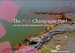 The Pink Champagne Pool: For a gay-friendly (organisational) culture