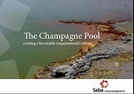The Champagne Pool: Creating a favourable organisational culture
