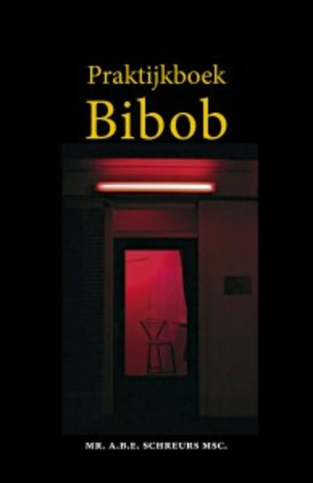Praktijkboek Bibob