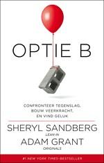 Optie B - Confronteer tegenslag, bouw veerkracht en vind geluk