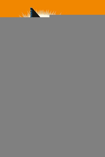 Hoera! De democratie is niet perfect