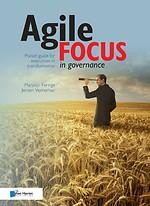 Agile focus in governance