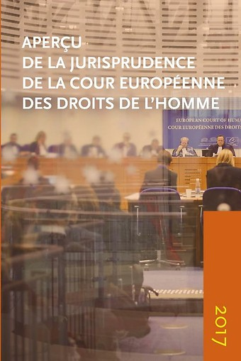 Aperçu de la jurisprudence de la Cour Européenne des Droits de l'Homme 2017