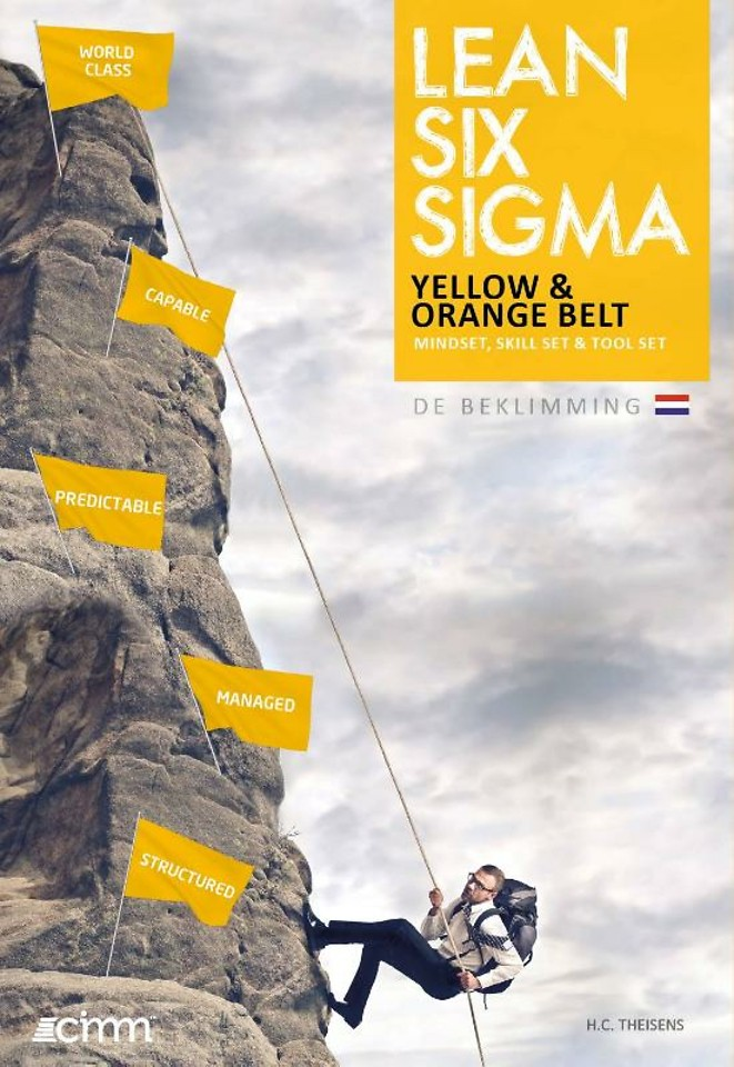 Lean Six Sigma yellow & orange belt